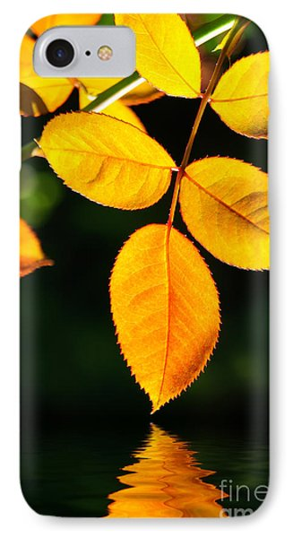 Leafs Over Water IPhone Case by Carlos Caetano