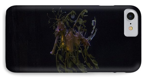 Leafy Sea Dragon IPhone Case by Ruth Jolly