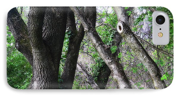Lean On Me IPhone Case by Donna Blackhall