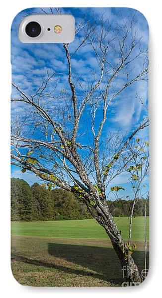 Leaning Tree Enhanced - Natchez Trace IPhone Case