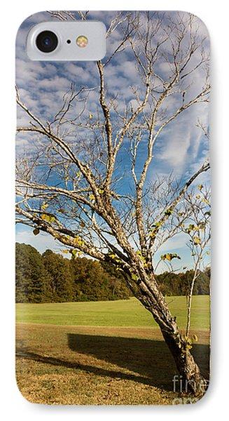 Leaning Tree - Natchez Trace IPhone Case