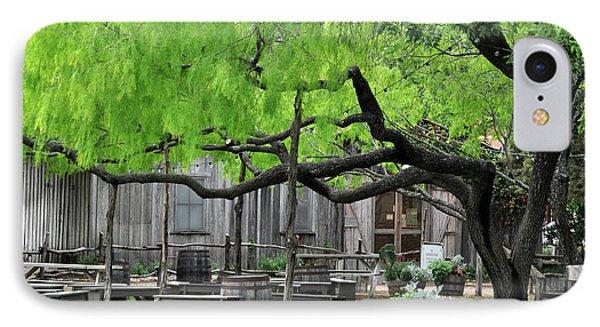 Leaning Tree IPhone Case by Teresa Blanton