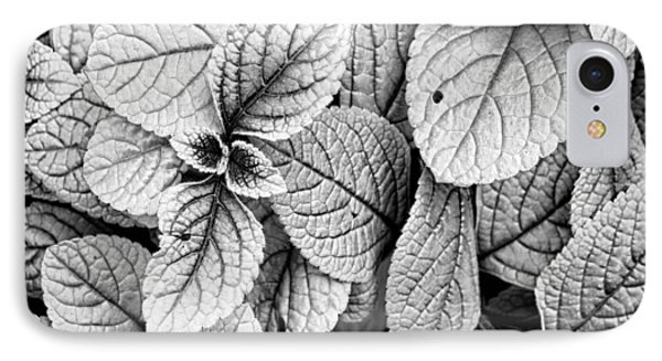 Leaves Black And White - Nature Photography IPhone Case by Ann Powell