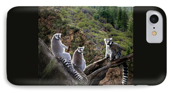 Lemur Family IPhone Case