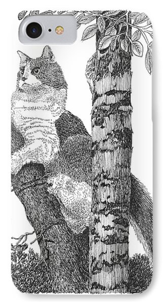 Leo The Cat In The Tree IPhone Case by Jack Pumphrey