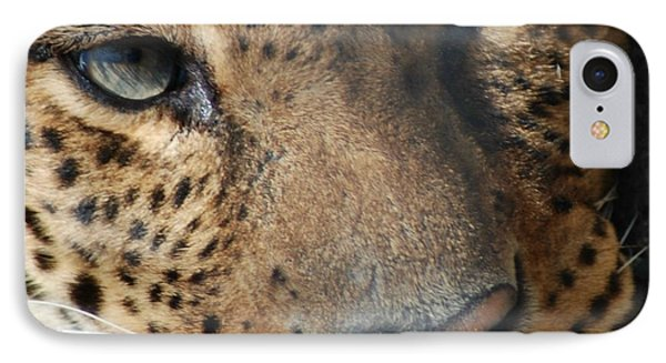 IPhone Case featuring the photograph Leopard Face by Richard Bryce and Family