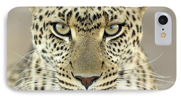 Leopard Panthera Pardus Female Phone Case by Martin Van Lokven