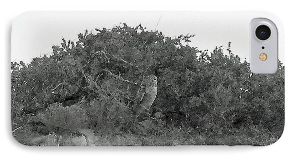 Lesser Horned Owl IPhone 7 Case by Sandy Taylor