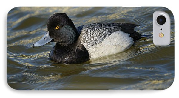 IPhone Case featuring the photograph Lesser Scaup Drake by Bradford Martin
