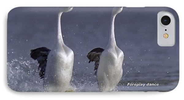 Let Humans Learn From The Nature  Foreplay Dance It Pleases Everyone IPhone Case by Navin Joshi