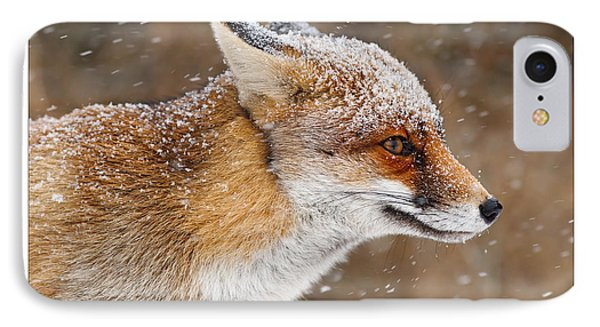 Let It Snow 5 - Christmas Card Red Fox In The Snow IPhone Case by Roeselien Raimond