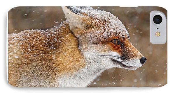 Let It Snow 6 - New Years Card Red Fox In The Snow IPhone Case by Roeselien Raimond