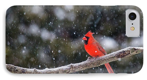 IPhone Case featuring the photograph Let It Snow by Mircea Costina Photography