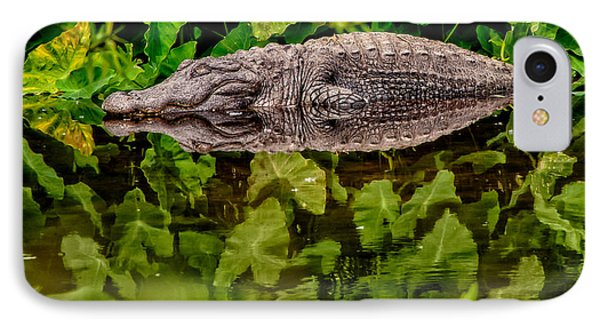 Let Sleeping Gators Lie Phone Case by Christopher Holmes