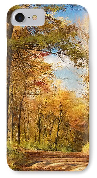 Let's Go For A Walk IPhone Case by Lois Bryan