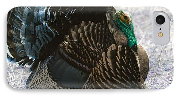 Lets Talk Turkey  IPhone Case