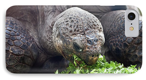 IPhone Case featuring the photograph Lettuce Makes You Strong by Miroslava Jurcik