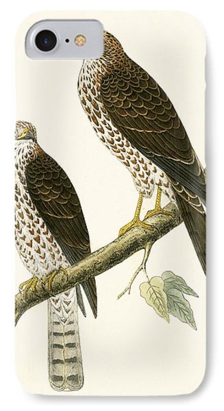Levant Sparrow Hawk IPhone 7 Case by English School
