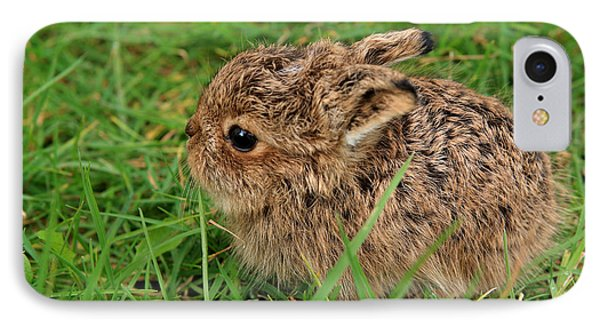 Leveret IPhone Case by Aidan Moran