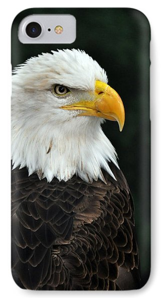 Liberty Three IPhone Case by Teresa Blanton