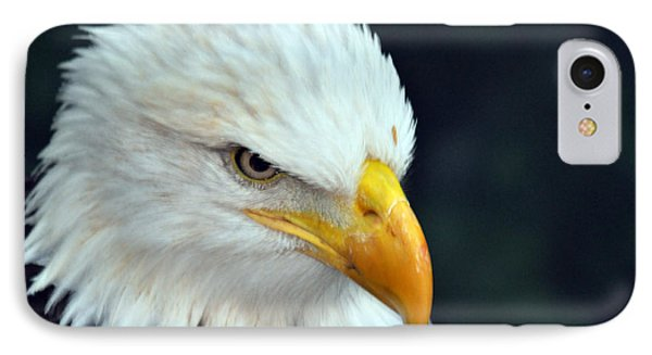 IPhone Case featuring the photograph Liberty Watching by Teresa Blanton