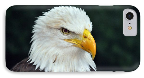 IPhone Case featuring the photograph Liberty Watching Two by Teresa Blanton