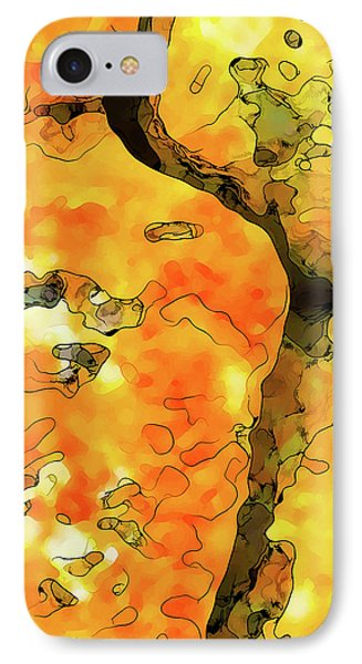 Lichen Abstract 1 IPhone Case by ABeautifulSky Photography