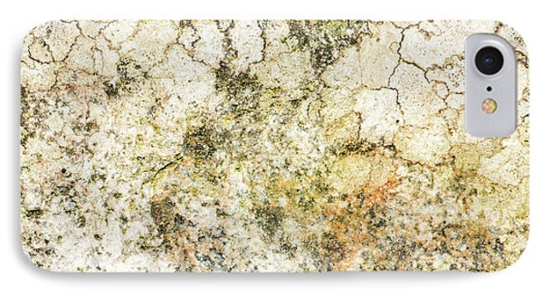 IPhone Case featuring the photograph Lichen On A Stone, Background by Torbjorn Swenelius