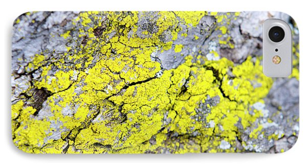 IPhone 7 Case featuring the photograph Lichen Pattern by Christina Rollo