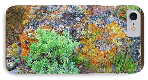 IPhone Case featuring the photograph Lichen Rainbow   by Michele Penner