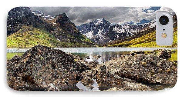 Lichen View IPhone Case