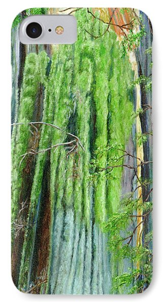 Life In A Redwood Forest IPhone Case