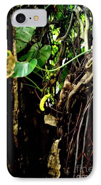 Life IPhone Case by Rushan Ruzaick