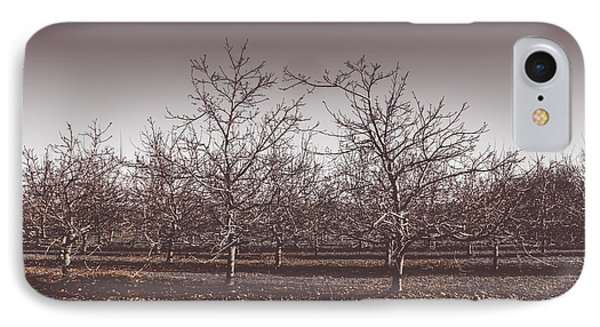Lifeless Cold Winter Orchard Trees IPhone Case