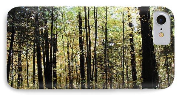 Light Among The Trees IPhone Case by Felipe Adan Lerma