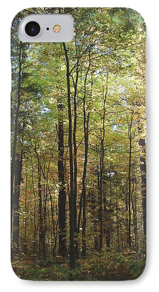 Light Among The Trees Vertical IPhone Case by Felipe Adan Lerma