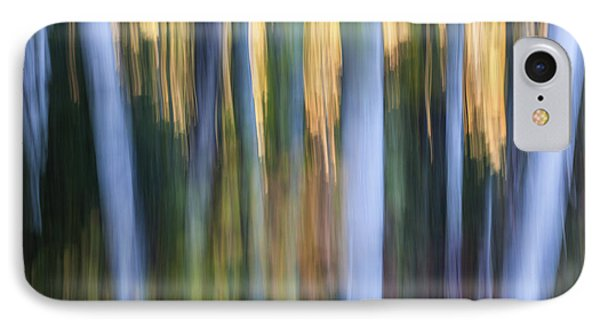 Light In Evening Forest IPhone Case by Elena Elisseeva