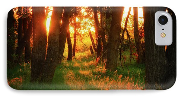 IPhone Case featuring the photograph Light Of The Forest II by John De Bord