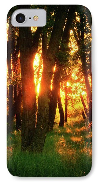 IPhone Case featuring the photograph Light Of The Forest by John De Bord