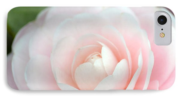 Light Pink Camellia Flower IPhone Case