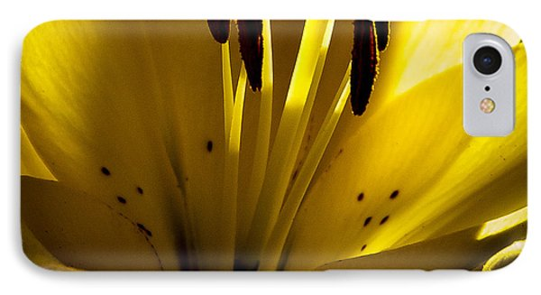 Lighted Lily Phone Case by David Patterson