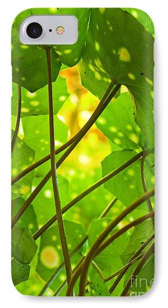 Ligularia Tussilaginea Phone Case by Carlos Caetano
