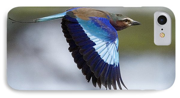 Lilac-breasted Roller-signed IPhone Case by J L Woody Wooden