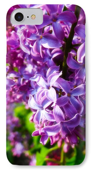 IPhone Case featuring the photograph Lilac In The Sun by Julia Wilcox