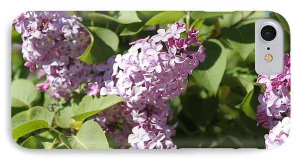 IPhone Case featuring the photograph Lilacs 5544 by Antonio Romero