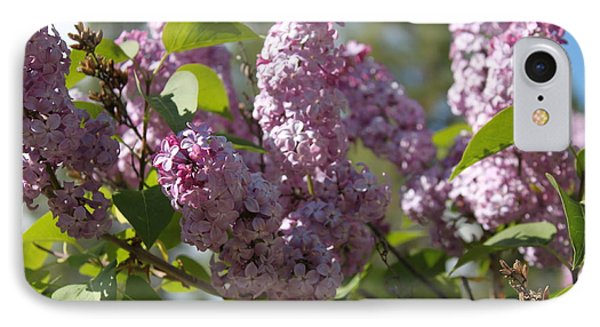 IPhone Case featuring the photograph Lilacs 5548 by Antonio Romero