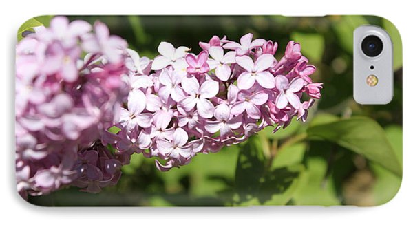 IPhone Case featuring the photograph Lilacs 5550 by Antonio Romero
