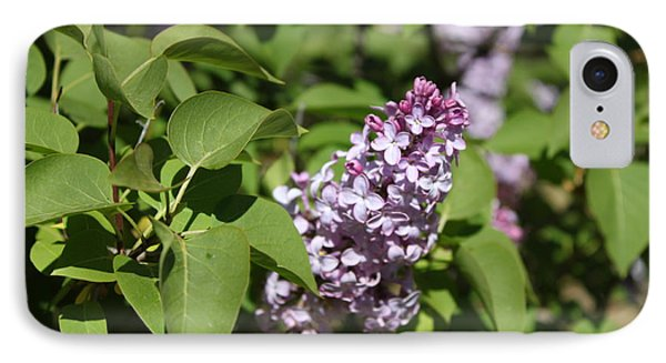 IPhone Case featuring the photograph Lilacs 5551 by Antonio Romero