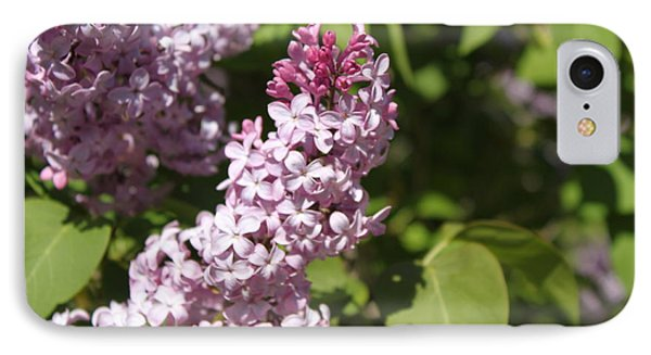 IPhone Case featuring the photograph Lilacs 5552 by Antonio Romero