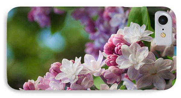 Lilacs Of Spring IPhone Case by Joni Eskridge